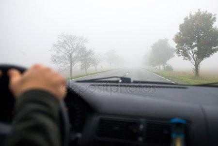 В Татарстане ожидается туман и ветер