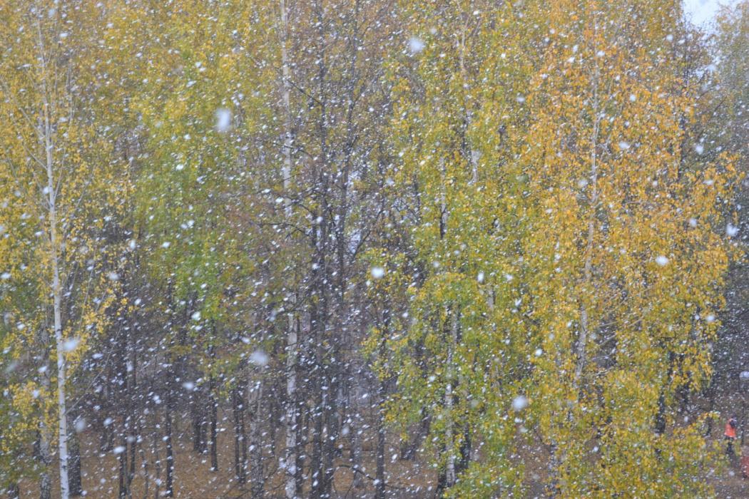 В понедельник циклон из Скандинавии принесет снегопад в Татарстан