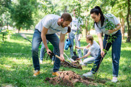 В Татарстане высадили полтора миллиона деревьев (ВИДЕО)