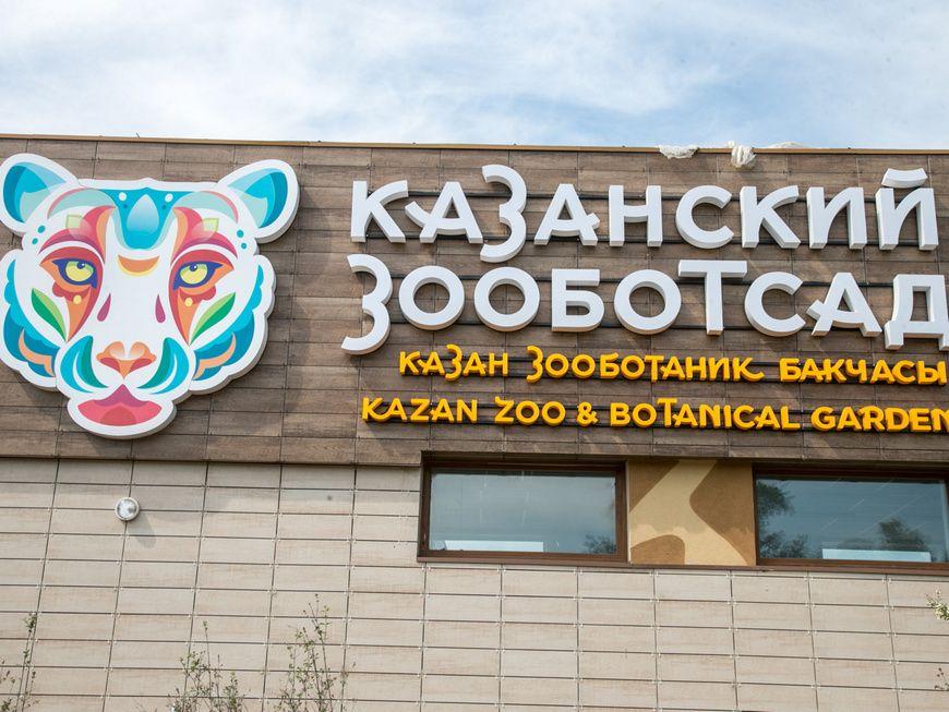 В конце декабря в Казани откроется новый зоопарк «Река Замбези. Африка»