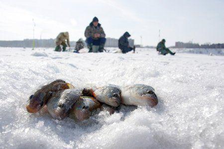 Рыбак из Спасского района уплыл в Ульяновск на льдине (ВИДЕО)
