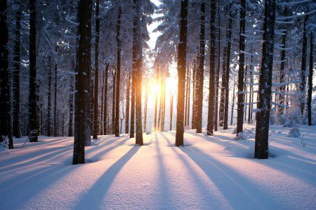 В конце недели в Татарстане установится теплая погода