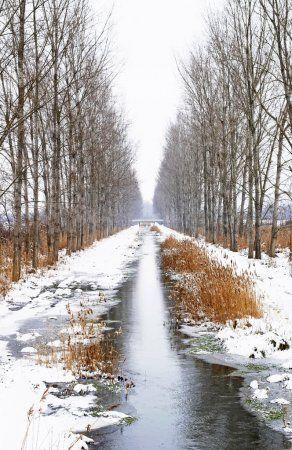 В Татарстане обещают мокрый снег и гололедицу