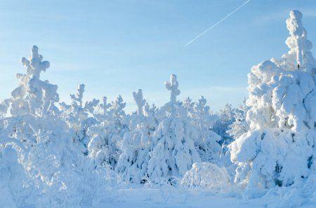 Когда в Татарстан придет настоящая зима и выпадет новогодний снег? (ВИДЕО)