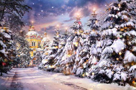Телерадиокомпания ТНВ поздравляет всех православных христиан с Рождеством Христовым