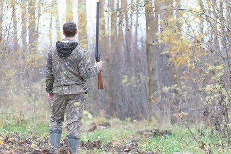 В Татарстане браконьеры ради забавы застрелили лосей, косуль и кабана