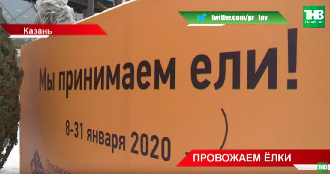 В Казани открыли пункты по утилизации новогодних елок (ВИДЕО)