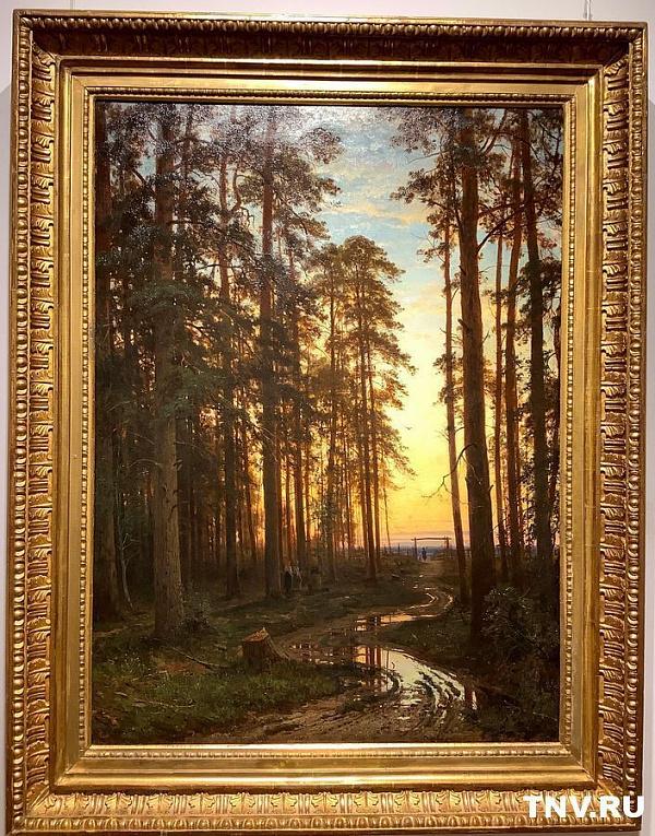 Вечер в сосновом лесу - 1875 год