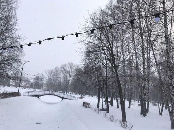 «В парке Урицкого процветает вандализм»: кто-то украл лампочки с новогодних гирлянд