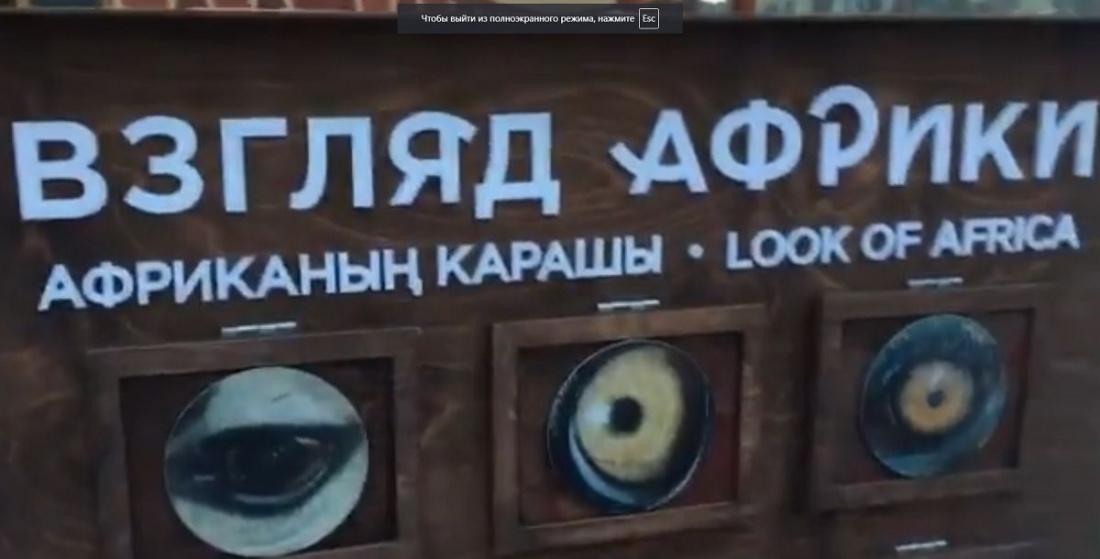 СМИ раздули скандал из-за стенда в зоопарке Казани