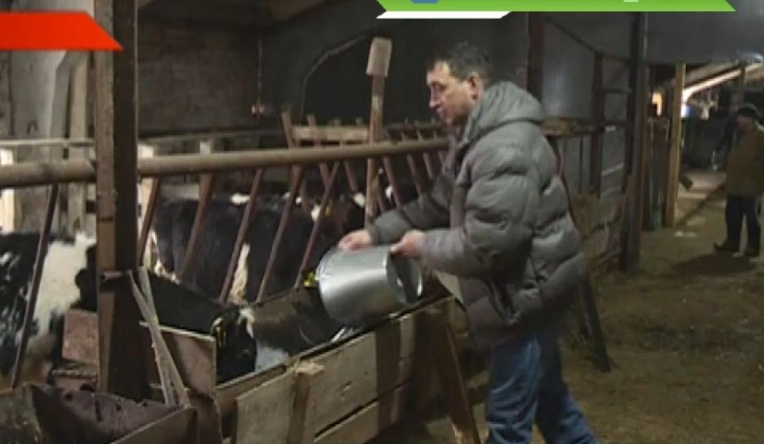 Татарстан фермерлары узган ел 300 миллион сум артык грант ала