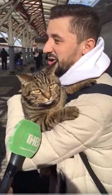 Кот Виктор по приезду в Казань ответил на вопросы журналистов - видео