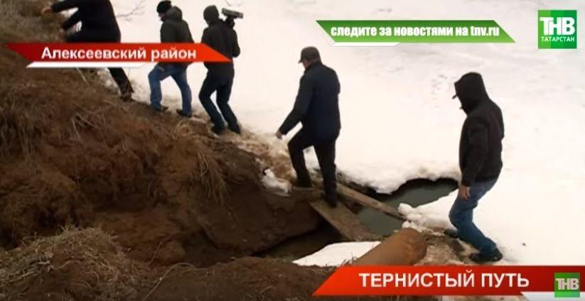 Путь на погост: жители села Алексеевского района жалуются на отсутствие дороги на кладбище - видео