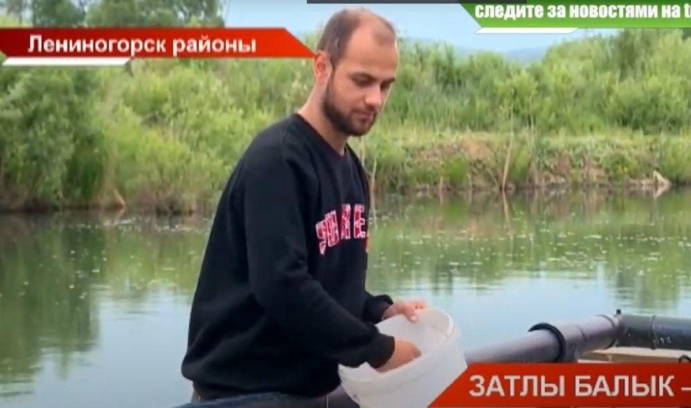 Лениногорск районында яшәүче әтиле-уллы Намазовлар гаиләсе күпләп затлы керкә балыгы үрчетә башлаган