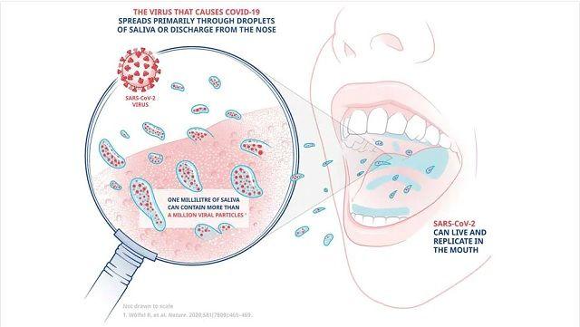 Ополаскиватель рта может защитить от заражения коронавирусом