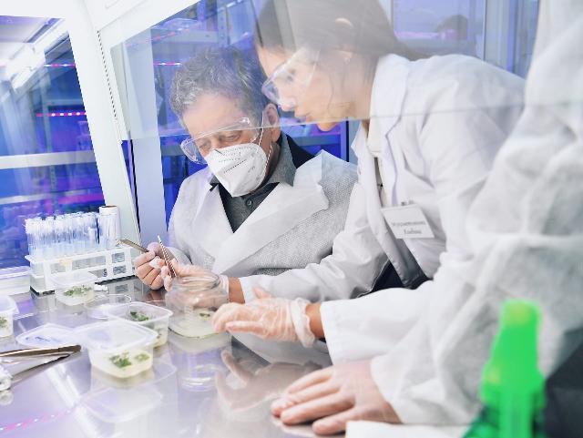 «Татнефть» создает новые методы диагностики выявления рака и диабета