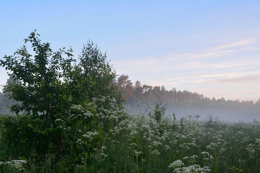 Дождливый день в субботу: 3 июля Татарстан накроют ливни, грозы, град и туман