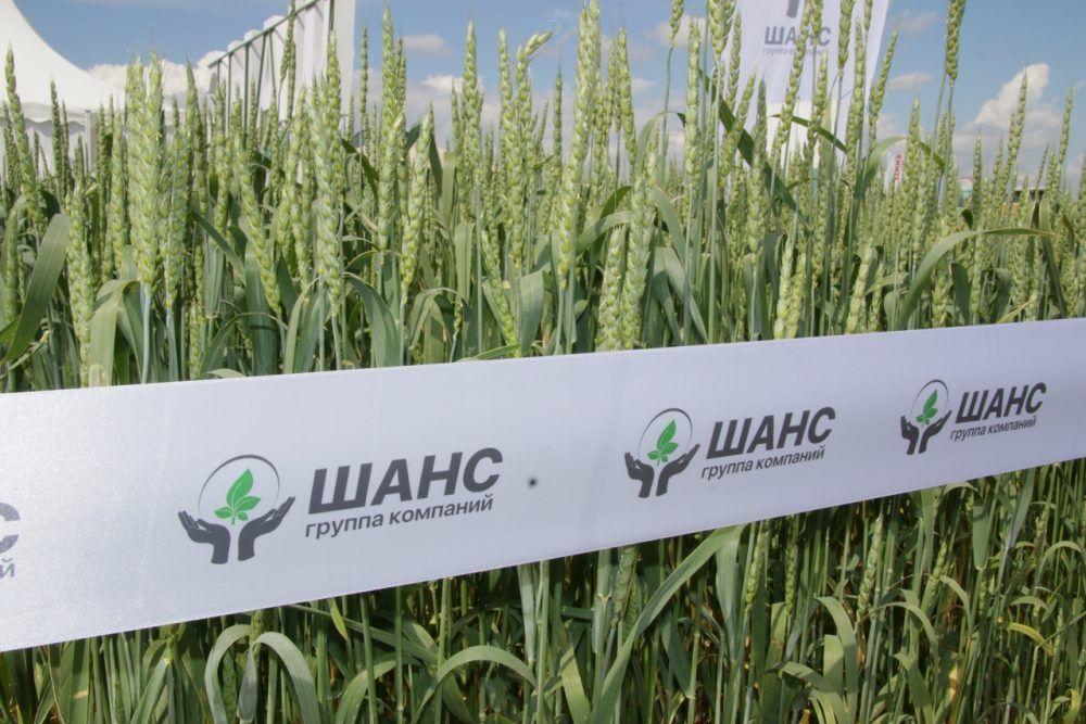 """На международной агропромышленной выставке АгроВолга презентовали продукцию ГК """"Шанс"""""""