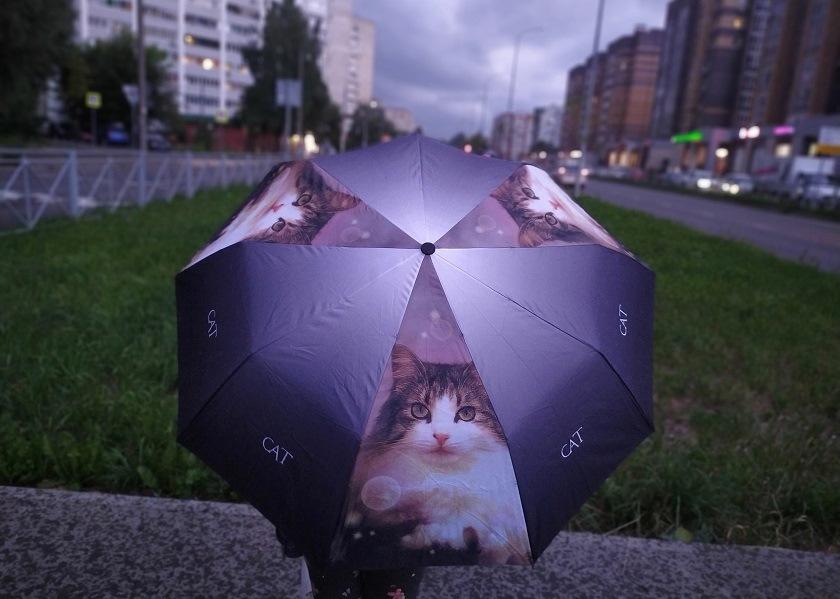 Татарстанцев предупредили о надвигающихся грозах