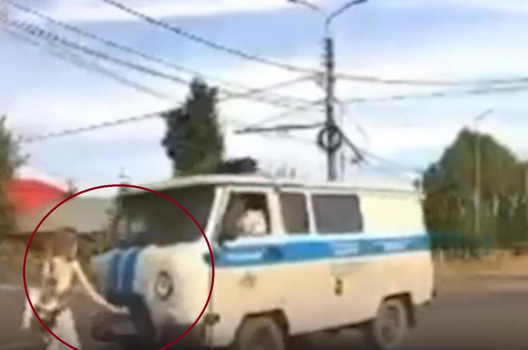 Момент наезда полицейского уазика на идущую по «зебре» девушку попал на видео
