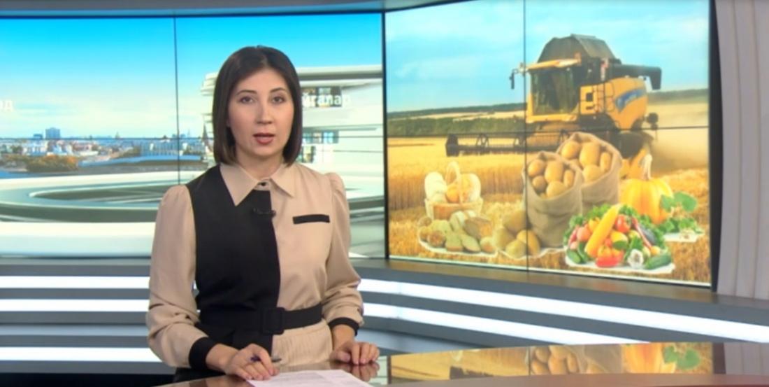 Рөстәм Миңнеханов Федераль хөкүмәткә авыл хуҗалыгына ярдәм буенча мөрәҗәгать итте
